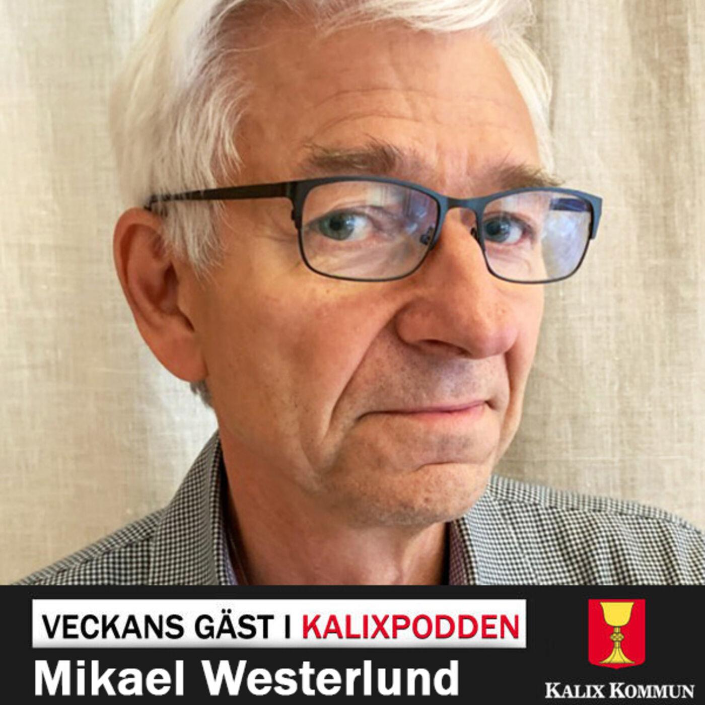 Mikael Westerlund, upphandlare vid Kalix kommun