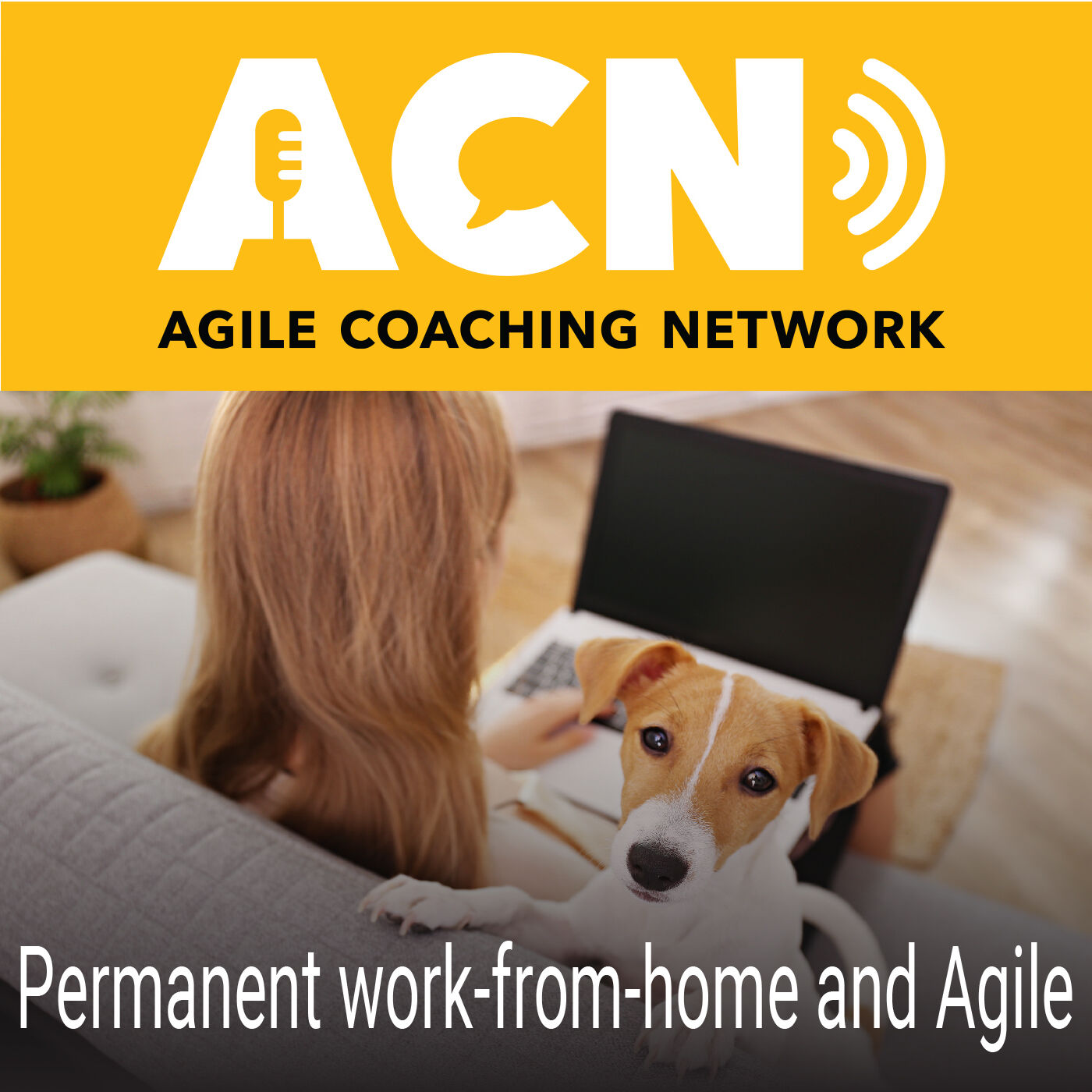 Permanent work-from-home and Agile, and resources for business and leadership agility