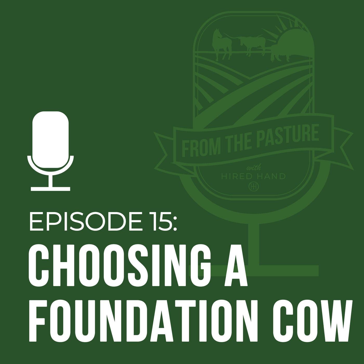 Choosing a Foundation Female