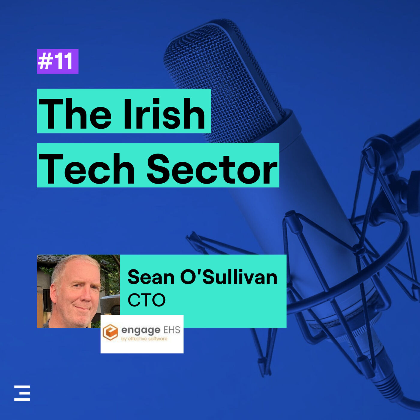 11. The Irish Tech Sector