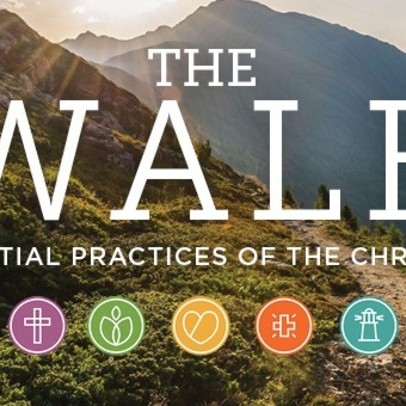 """The Walk"" - Week #1 - Eric F. Koehler"