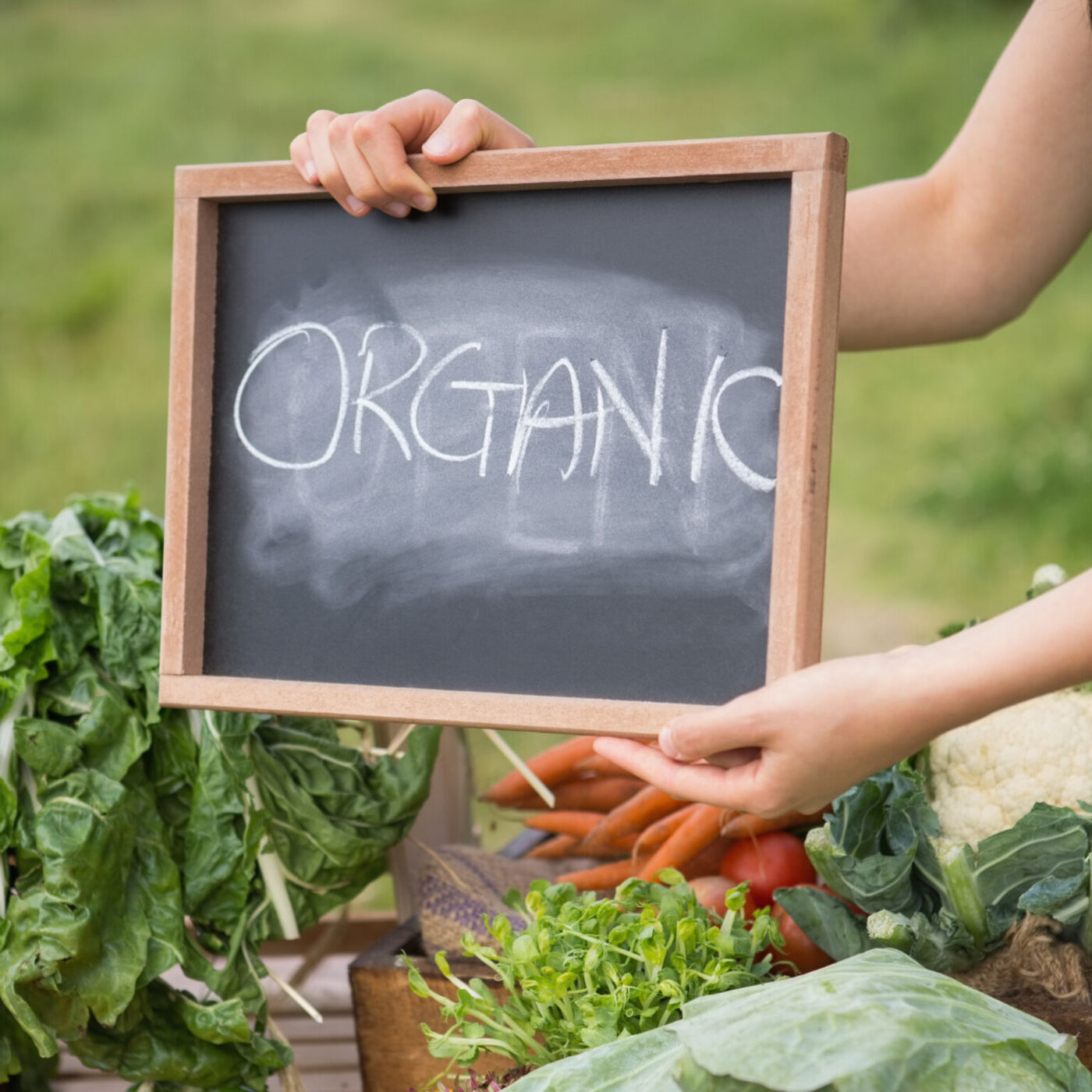 Organic Agriculture and Its Potential to Mitigate Climate Change