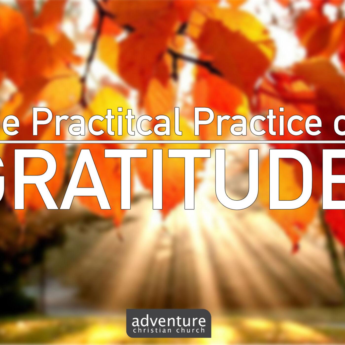 The Practical Practice of Gratitude w/ Michael Peavy