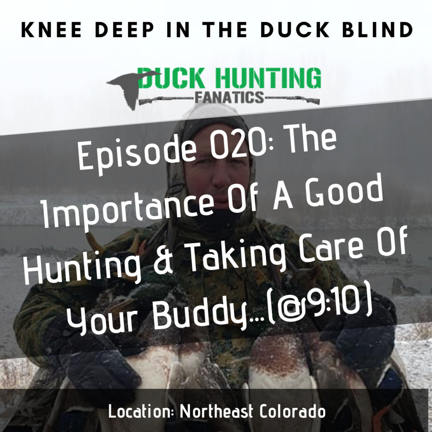 The Importance of a Good Duck Hunting Dog...