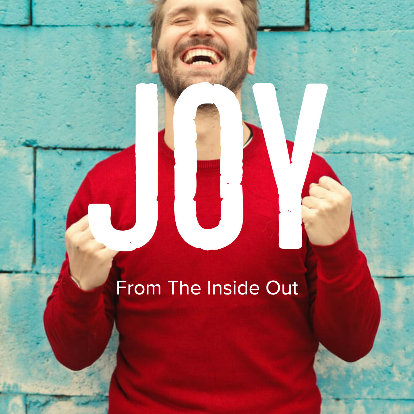 Joy: From the Inside Out