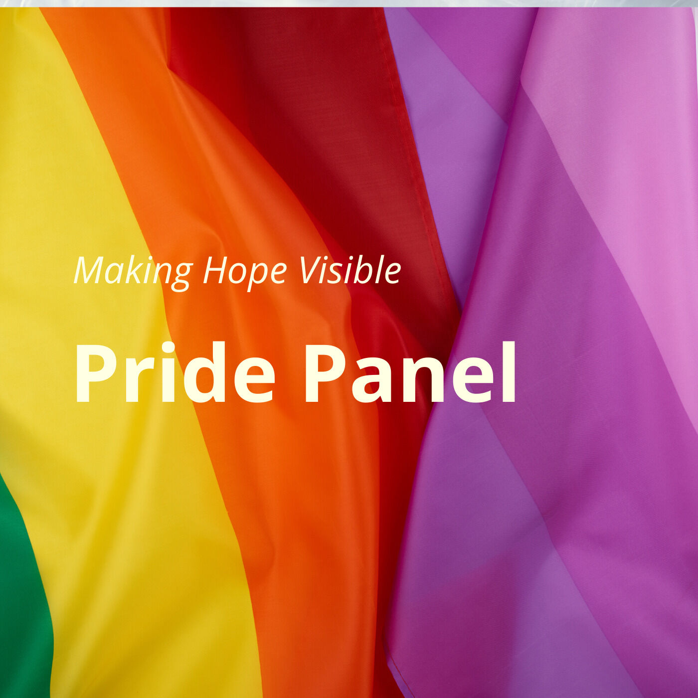 Pride Panel