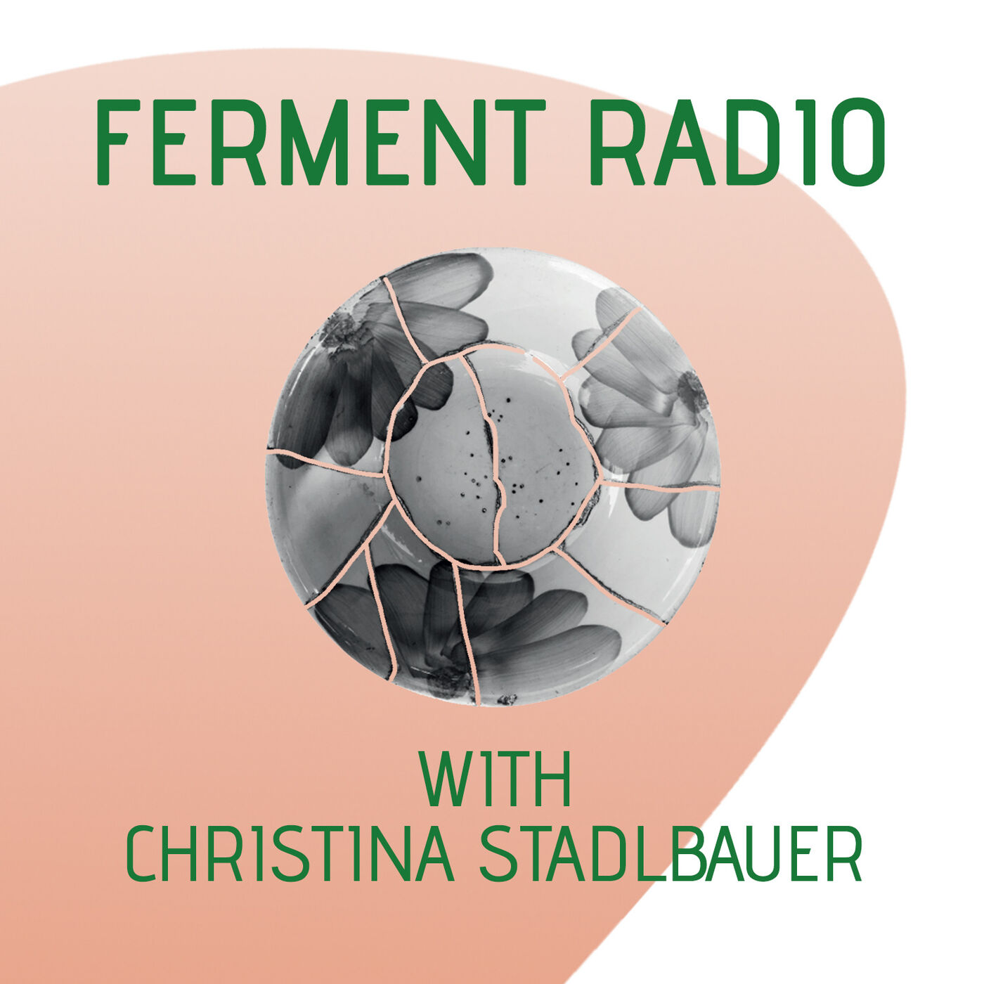 #4: Healing the inanimate with bacteria (with Christina Stadlbauer)