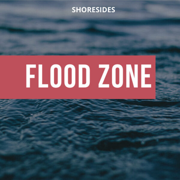 Flood Zone Podcast Artwork Image