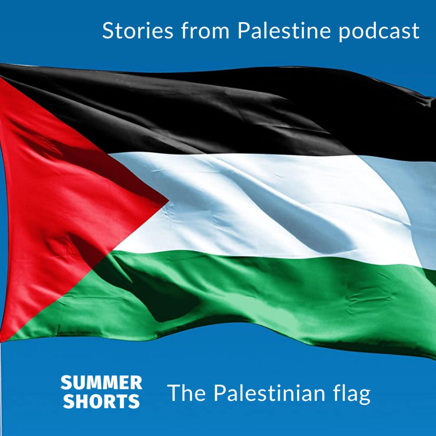 Summer shorts #1 The Palestinian flag