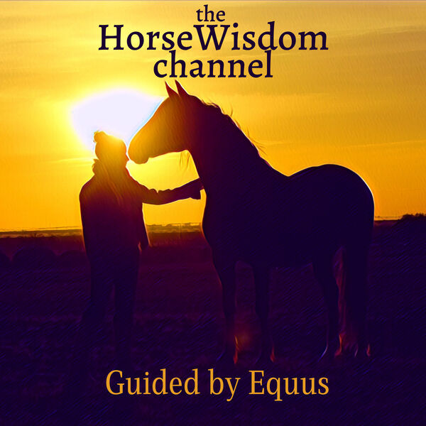 the HorseWisdom Channel Guided by Equus Podcast Artwork Image