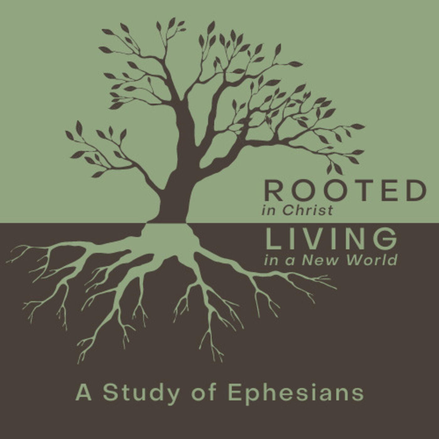 Rooted in Christ- Living in a New World - Grace Given