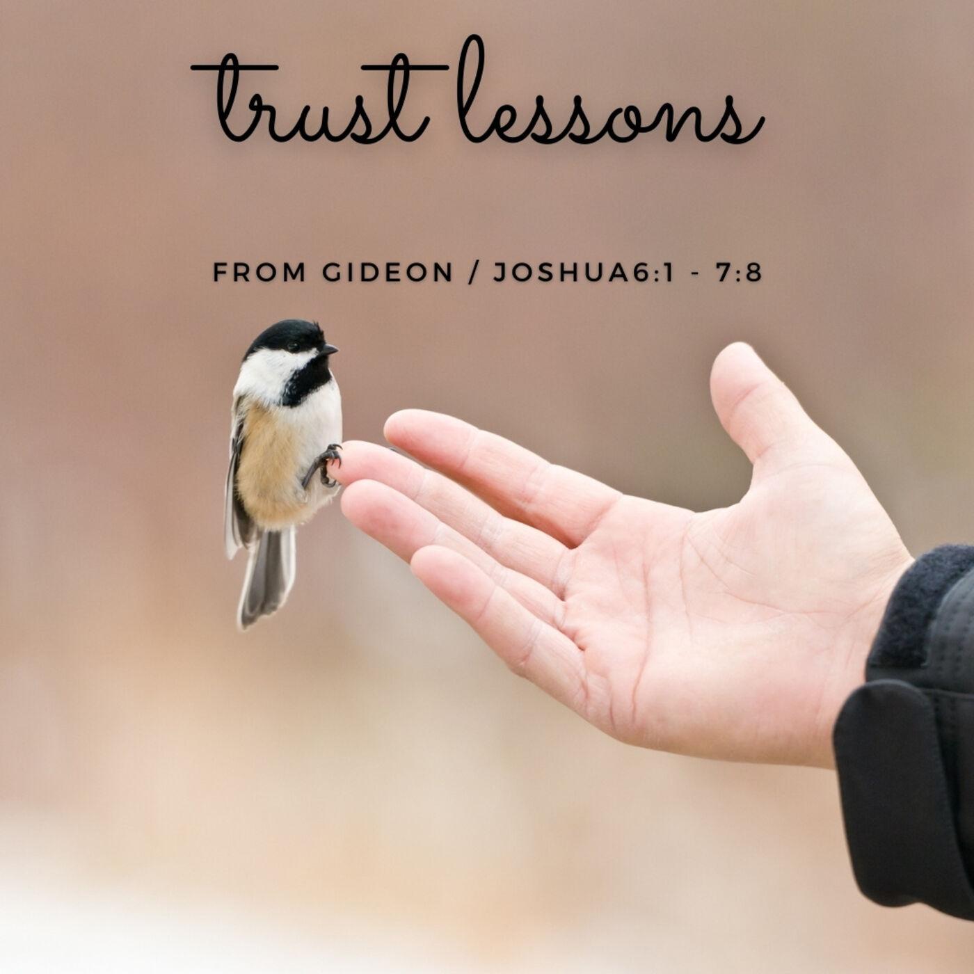 Trust Lessons