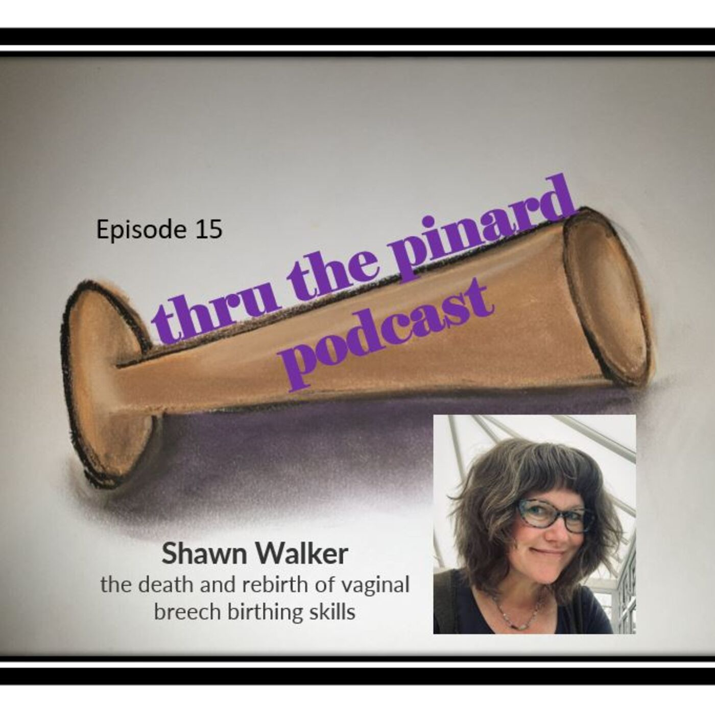 Ep 15 Shawn Walker- the death and rebirth of vaginal breech birthing skills