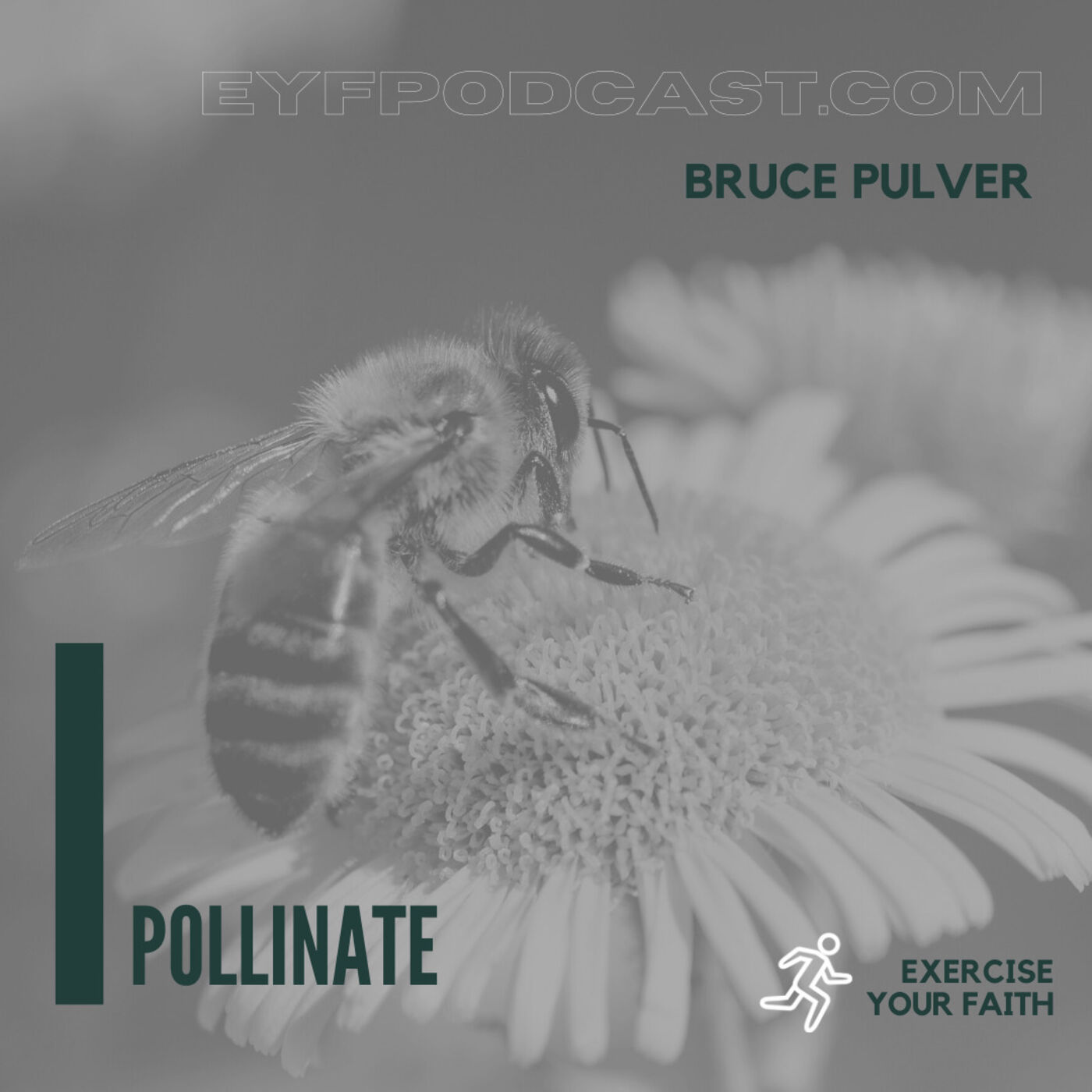 EYFPodcast- Exercise your faith and POLLINATE for Christ with Bruce Pulver