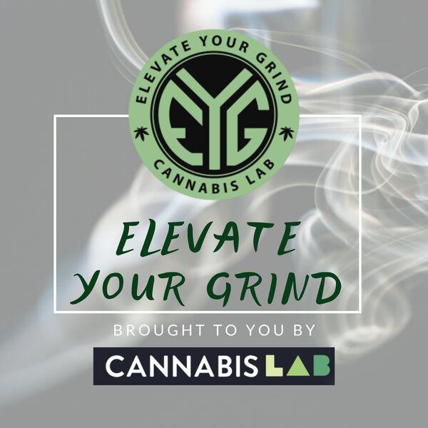 Elevate Your Grind Podcast Artwork Image