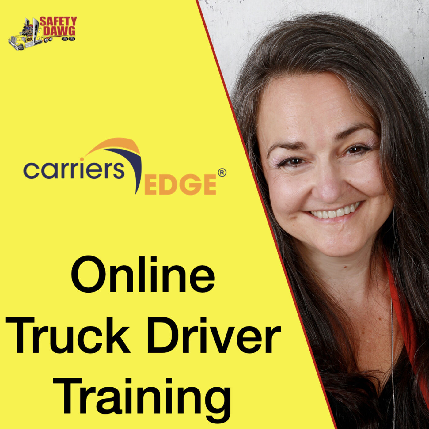 32. Online Truck Driver Training, The Good, The Bad...