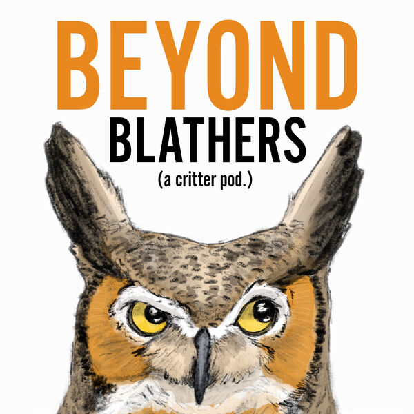 Beyond Blathers Podcast Artwork Image