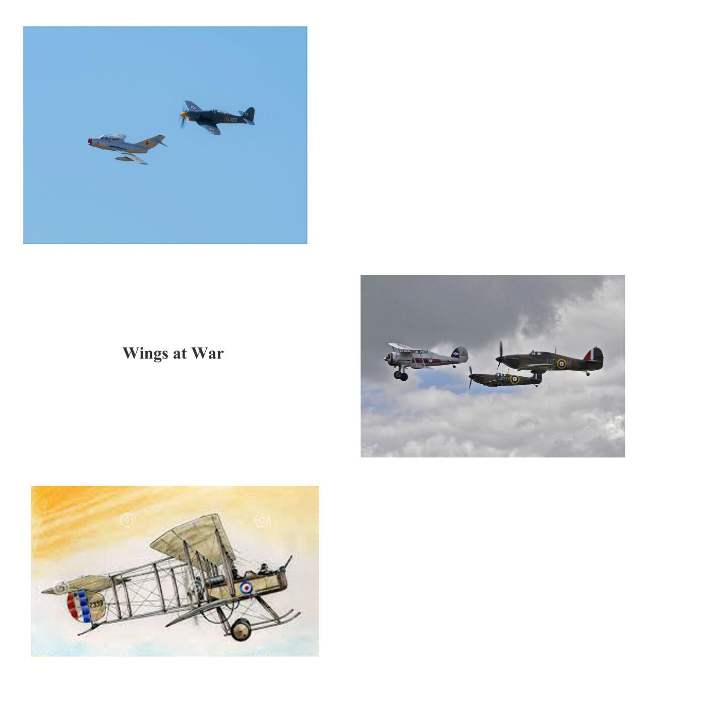 Wings at War