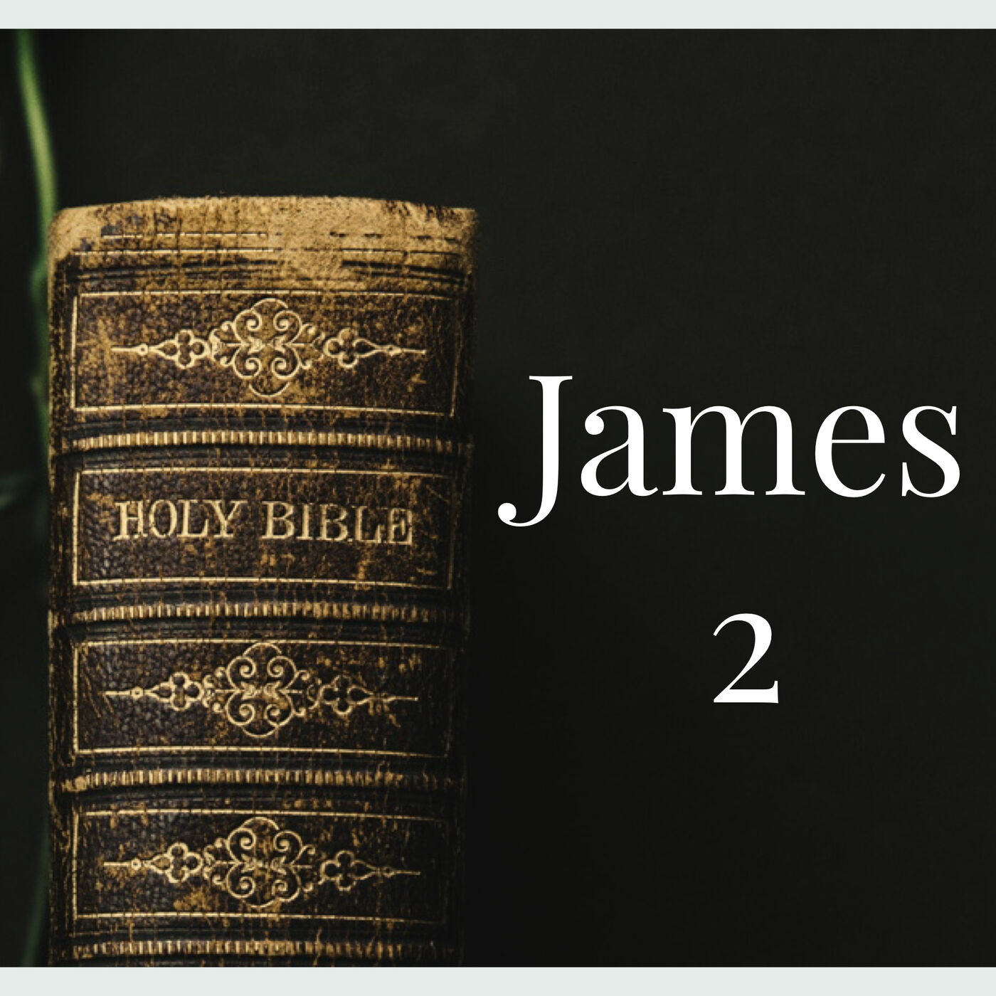 The Book of James-Week 2
