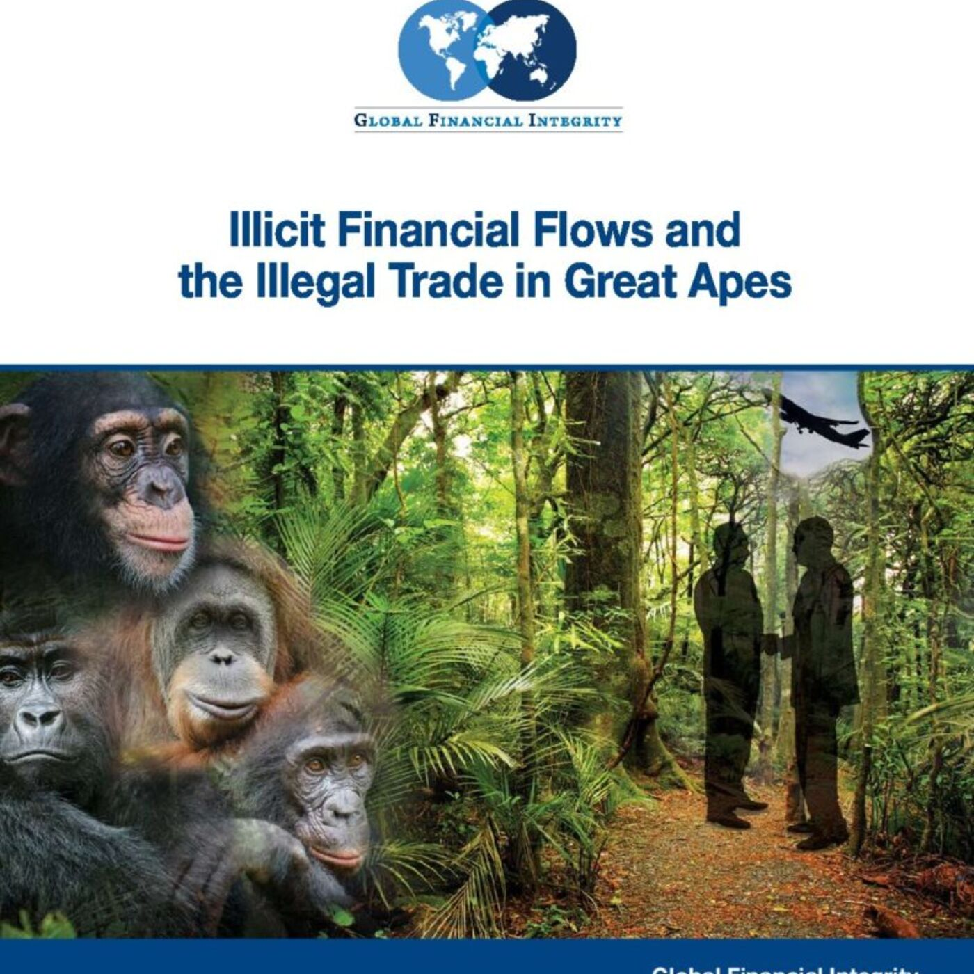 Illicit Financial Flows and the Illegal Trade in Great Apes