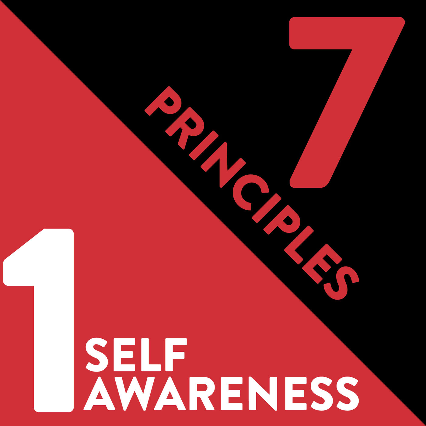 Self-Awareness: The First Principle of Relationship Management